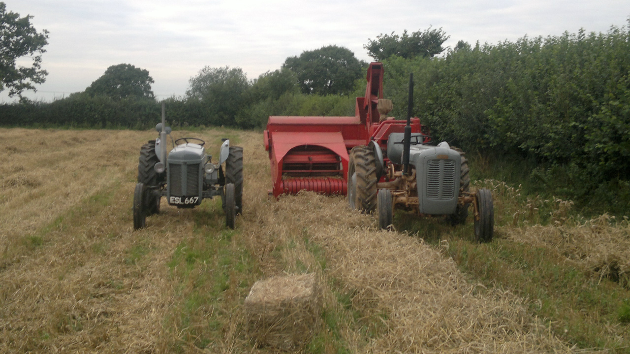 Classic combination 701 and 35 grey and gold this was the first real test  for baler after nearly 40 yrs parked up, baling 460 bales of our wheat  straw ...