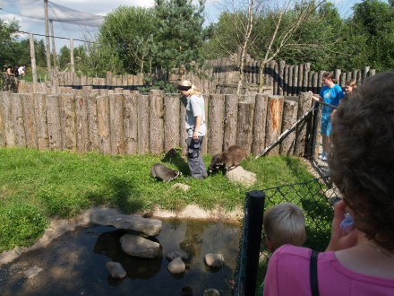 Munkholm zoo www side 6